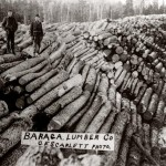 1900's picture showing stacked logs at a Michigan sawmill.